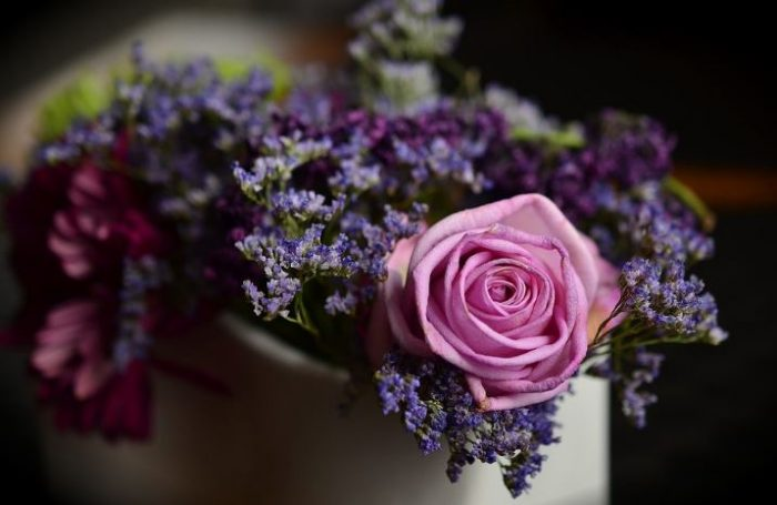 the most beautiful purple flowers rose flower