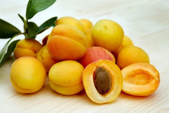 orange fruits apricot