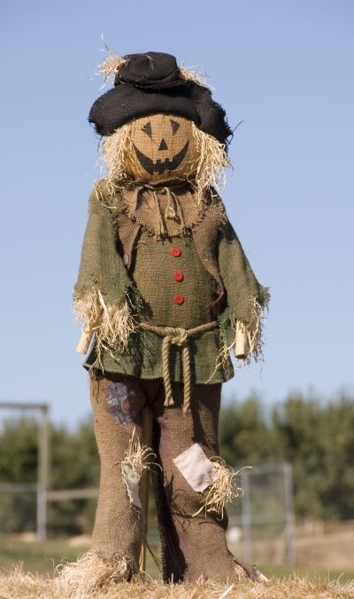 scarecrow ideas