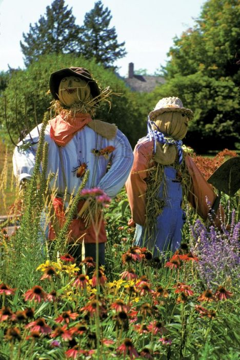 diy scarecrow ideas