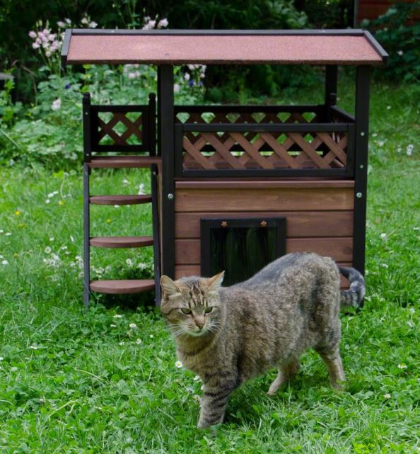 cat house ideas