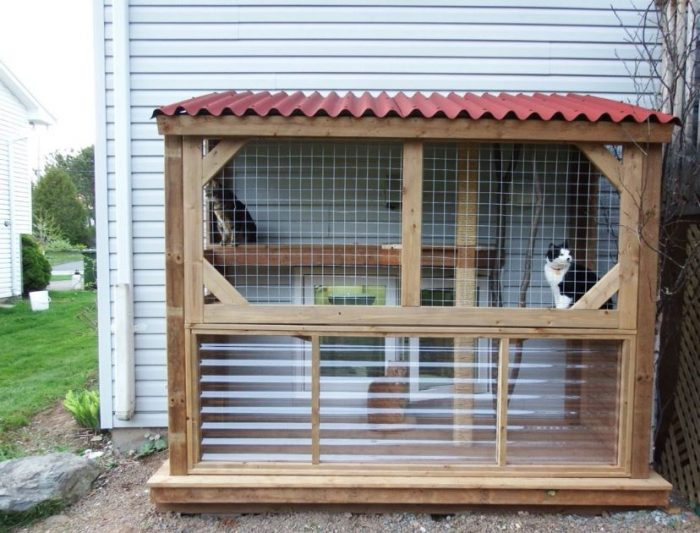 19 Cute Awesome Cat House Ideas, Outdoor Cat Kennel Ideas